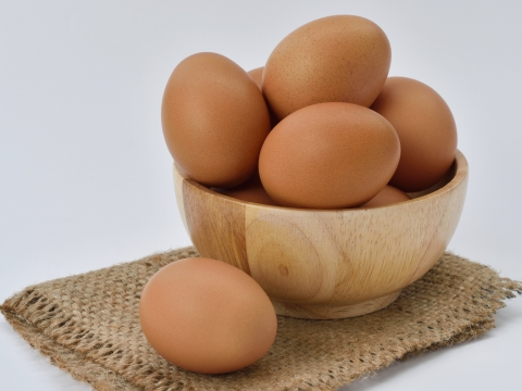 BiovaFlex® Soluble Egg Membrane